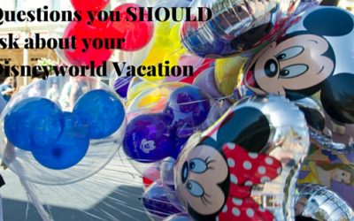 Questions You Should Ask About Your Disneyworld Vacation