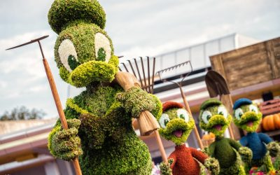 The Epcot Flower and Garden Festival is back!
